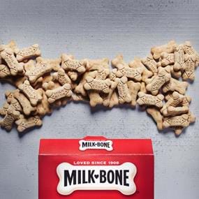 Milk Bone dog biscuits conceptual photography